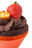 Miniature chocolate cupcake with strawberry Royalty Free Stock Photo