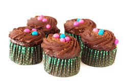 Miniature chocolate cupcakes Stock Photography