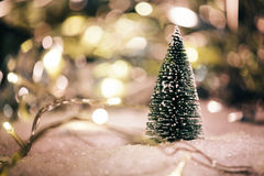 Miniature Christmas tree in the snow and decorations Stock Images