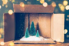 Magic Christmas card. Miniature of Christmas trees with snow in a cardboard box. Lights bokeh and film grain added Royalty Free Stock Photos