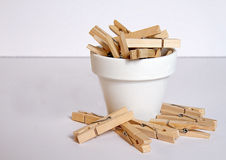 Miniature Clothespins in Flower Pot Royalty Free Stock Photos