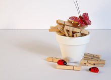 Miniature Clothespins in Flower Pot Royalty Free Stock Photo