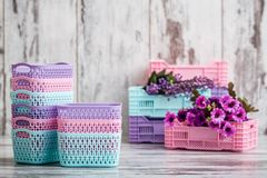 Miniature Colorful Plastic Baskets for Household Use. On white background Stock Images