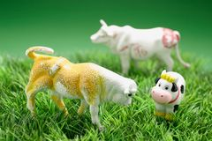 Miniature Cow Figurines Royalty Free Stock Image