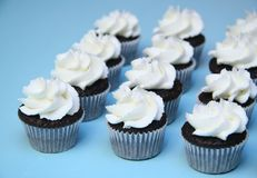 Miniature cupcakes. Miniature chocolate cupcakes with white vanilla frosting on a blue background Royalty Free Stock Photos