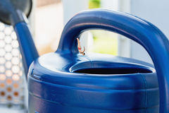 Miniature diver. Jumps into a watering can Stock Photos