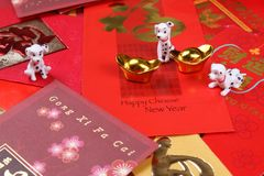 Miniature dogs with chinese new year angpow packets royalty free stock images