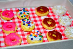 Miniature Donuts Royalty Free Stock Image