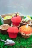 Miniature du jardinage photo libre de droits