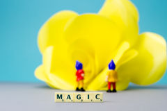 Miniature dwarves with magic sign. Miniature dwarves with giant flower on blue background Stock Photography