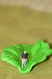Miniature of a fat man and a salad leaf Royalty Free Stock Photography