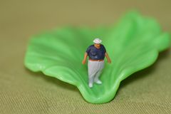 Miniature of a fat man and a salad leaf Stock Image