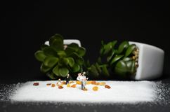 Miniature figure, bride and groom / couple celebrate the wedding royalty free stock images