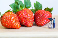Miniature figure (cinematographer) with ripe red strawberries on wooden table Stock Image