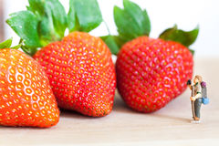 Miniature figure (explorer) with ripe red strawberries on wooden table Royalty Free Stock Photo