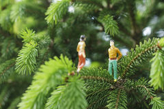 Miniature figures talking on the tree Stock Photos