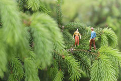 Miniature figures talking on the tree Royalty Free Stock Image