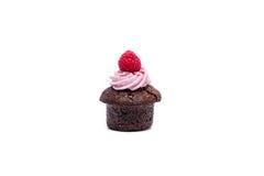 Miniature forest fruit desserts. Delicious miniature forest fruit desserts Royalty Free Stock Photo