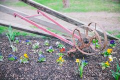 Miniature garden and horticulture tools in early spring.  royalty free stock photos
