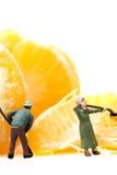 Miniature gardeners Mandarin Satsuma Royalty Free Stock Photos