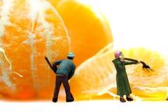 Miniature gardeners Mandarin Satsuma Royalty Free Stock Photography