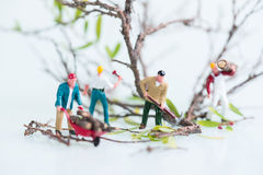 Miniature lumberjacks working together in cutting and felling trees close up Stock Photos
