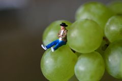 Miniature of a man sitting on the grapes Stock Photos