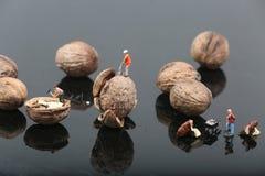 Free Miniature Men Cracking Nuts Stock Photo - 68387900