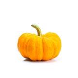 Miniature orange pumpkin on white Stock Photo