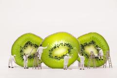 Miniature painters coloring Kiwi slices. Macro photo Royalty Free Stock Images