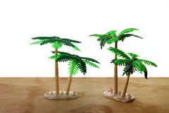 Miniature Palm Trees Stock Images