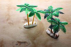 Miniature Palm Trees Stock Photo