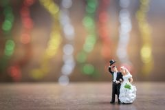 Miniature people bride and groom  on wooden floor with colorful Stock Image