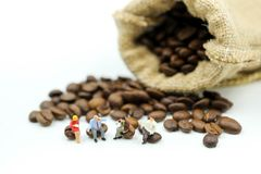 Miniature people : business team sitting on coffee beans,relax c stock photos