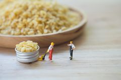 Free Miniature People Chef Select Moong Dal Namkeen Fresh And Crisp. Grains Dried Vegetarian Food Ingredient Royalty Free Stock Photos - 144385878