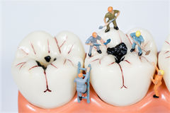 Miniature people clean tooth model Royalty Free Stock Photos