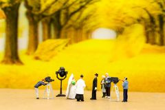Miniature people : Couple of love just marry in front of the cam royalty free stock photo