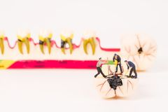 Miniature people and dental model. Dental care concept Royalty Free Stock Image