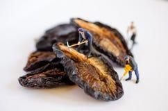 Miniature people - figurines royalty free stock image