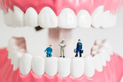 Miniature people to clean tooth model Royalty Free Stock Photography