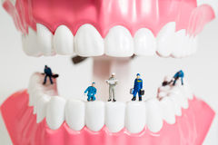 Miniature people to clean tooth model Royalty Free Stock Photos