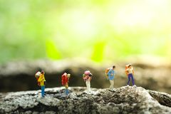 Five travelers trekking in jungle on greenery blurred background. Miniature people, travelers / backpackers / trekkers trekking in jungle on greenery blurred royalty free stock images