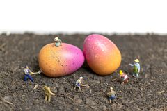Miniature people work at Easter-eggs for Easter day. With white background royalty free stock photo