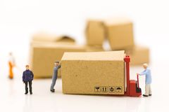 Miniature people: Worker use pallet truck with the boxs using as background business of warehouse concept.  Royalty Free Stock Image