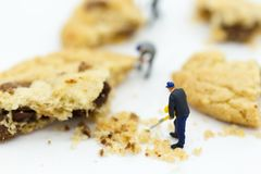Miniature people : Workers was crushed cookies. Image use for bakery business concept Royalty Free Stock Images