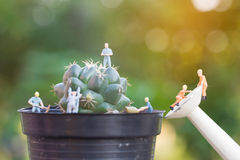 Miniature people working in the garden Stock Image