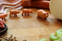 Miniature pigs royalty free stock photography