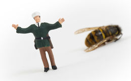 Miniature police officer guarding a crime scene - dead wasp Stock Photo