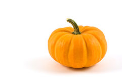Miniature pumpkin. On white background with copy space Royalty Free Stock Photography
