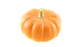 Miniature Pumpkin 6. Photo of miniature pumpkin on white background stock image